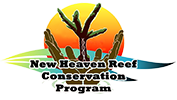 New Heaven Reef Conservation Program
